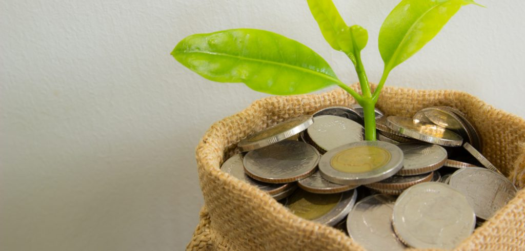 Money in a pot with a leaf growing